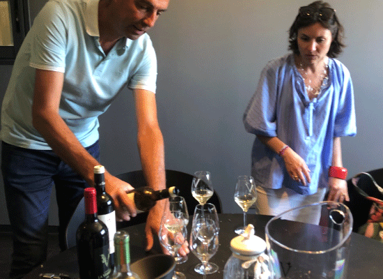 Maja Alves curating wines