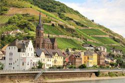 Photo for: Rhône Valley:  Two Distinct Regions in One